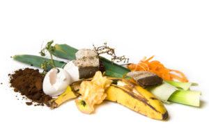 Ratten rechtfertigen keine Mietminderung, wenn Sie durch eine unsachgemäße Entsorgung von Müll angelockt wurden.